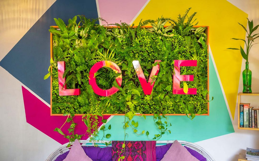 New 'Love' Green Wall at BE Happy Siem Reap